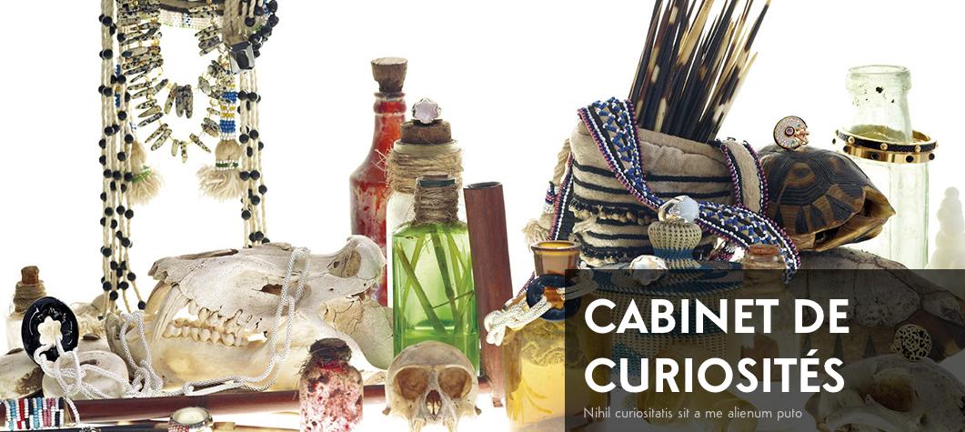 Expo_Cabinet_de_curiosites
