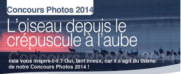 Concours_Photo_LRPBO