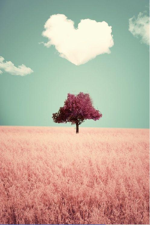 inspiration-photo-st-valentin-11-Pin-305118943476205443