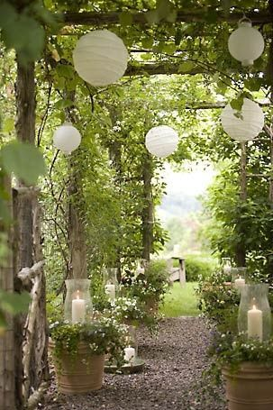 inspiration-photo-jardin-Pin-302233824970224986