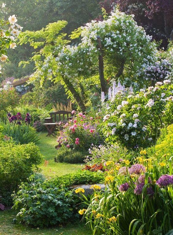 inspiration-photo-jardin-Pin-422281193328884
