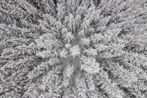 kacperkowalski_sideeffects_seasonswinter18